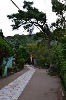 宇治上神社 (1) (Small).JPG