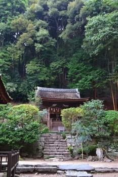 宇治上神社 (7) (Small).JPG