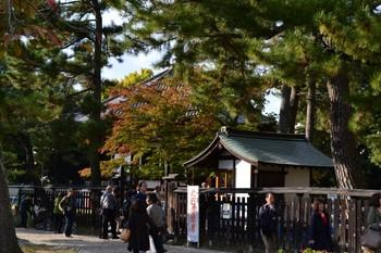 興福寺 (11).JPG