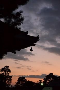 興福寺 (35).JPG