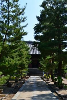 黄檗山万福寺 (10).JPG