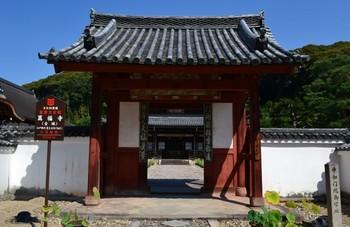黄檗山万福寺 (11).JPG