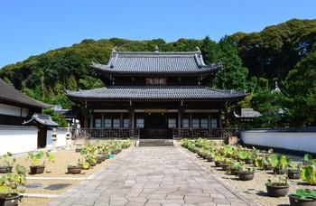 黄檗山万福寺 (12).JPG