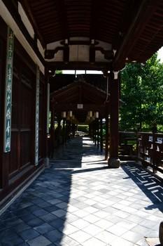 黄檗山万福寺 (14).JPG