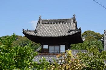黄檗山万福寺 (28).JPG