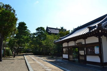 黄檗山万福寺 (3).JPG